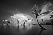 Vietnam Images-Fine art-infrared landscape-Chau Doc. hoàng thế nhiệm