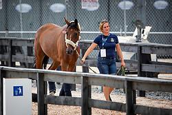 Von Eckermann Henrik, SWE, Mary Lou 194<br /> World Equestrian Games - Tryon 2018<br /> © Hippo Foto - Sharon Vandeput<br /> 15/09/2018