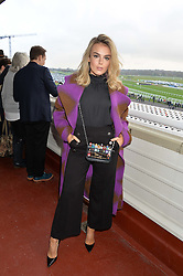 NEWBURY, ENGLAND 26TH NOVEMBER 2016: Tallia Storm at Hennessy Gold Cup meeting Newbury racecourse Newbury England. 26th November 2016. Photo by Dominic O'Neill