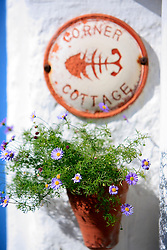 UK CORNWALL ST IVES 10JUN08 - Detail view of cottages in St Ives in Cornwall, western England...jre/Photo by Jiri Rezac / WWF UK..© Jiri Rezac 2008..Contact: +44 (0) 7050 110 417.Mobile:  +44 (0) 7801 337 683.Office:  +44 (0) 20 8968 9635..Email:   jiri@jirirezac.com.Web:    www.jirirezac.com..© All images Jiri Rezac 2008 - All rights reserved.