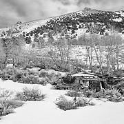 Abandoned Shotgun Riddled Car - Aspen Grove - Chemung Mine - Black & White