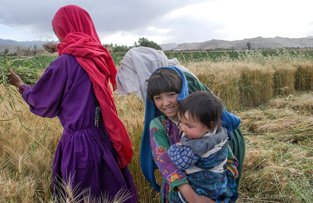 Afghans harvest wheat in Bamiyan, Afghanistan, the site of the ancient Buddha statues destroyed by the Taliban August 1, 2002.  (Photo  by Ami Vitale)