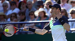 Great Britain's Andy Murray during day two of the Nature Valley International at Devonshire Park, Eastbourne.