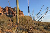 Flat Iron Peak, Superstition Mountains Arizona