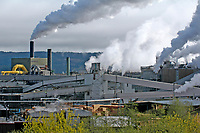 The Cambell River pulp mill, Vancouver Island, Canada