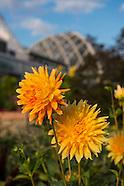 2013 Denver Botanic Gardens