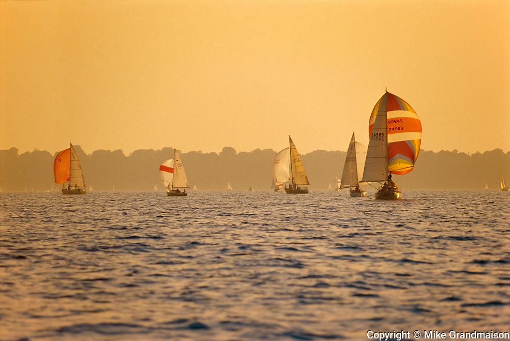 Sailing on Lake Ontario  (Hamilton Harbour) during regatta<br />Hamilton<br />Ontario<br />Canada