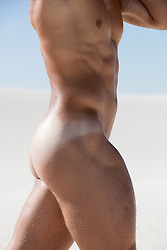 detail of a muscular nude man