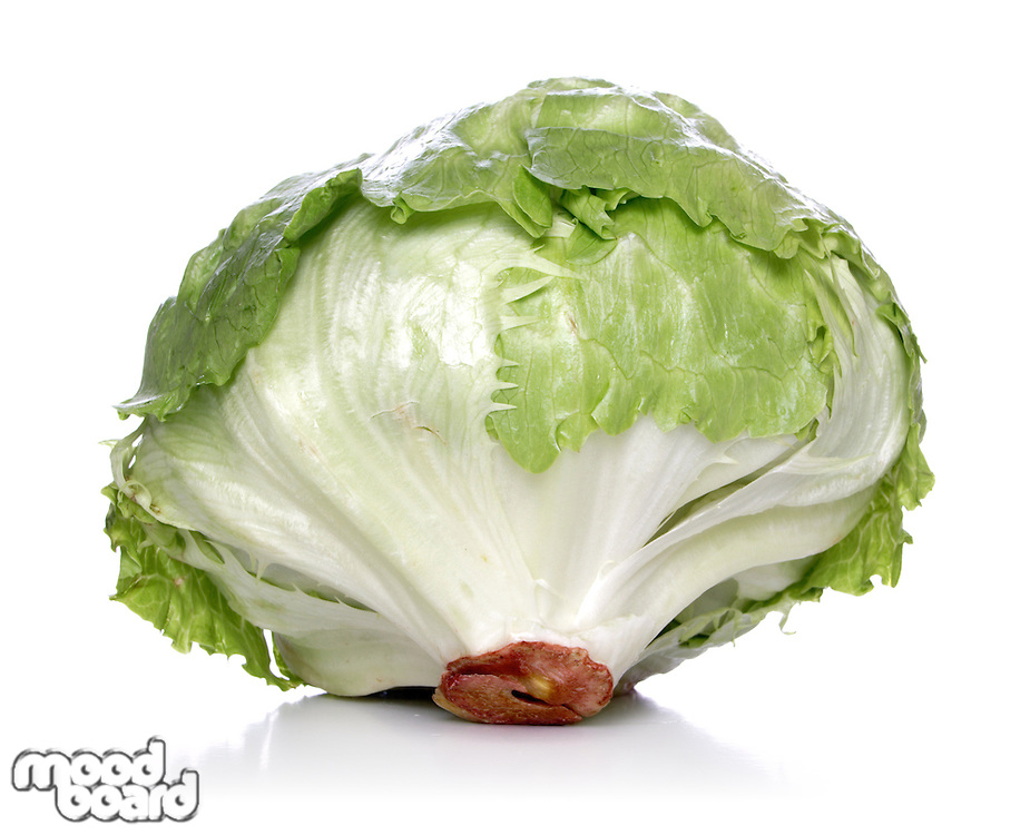 Close-up of cabbage on white background