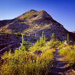 Hiking Trail Near Windy Ridge, Mt. St. Helens National Volcanic Monument, Washington, US
