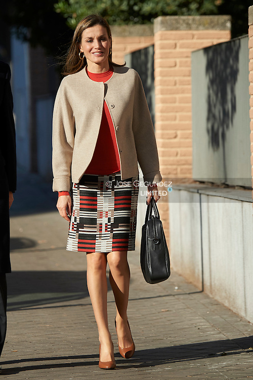 Queen Letizia of Spain attends a Meeting with the Board of the Spanish Federation of Rare Diseases (FEDER) at FEDER headquarters on January 12, 2017 in Madrid