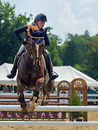 2018 Ludwig's Corner Horse Show