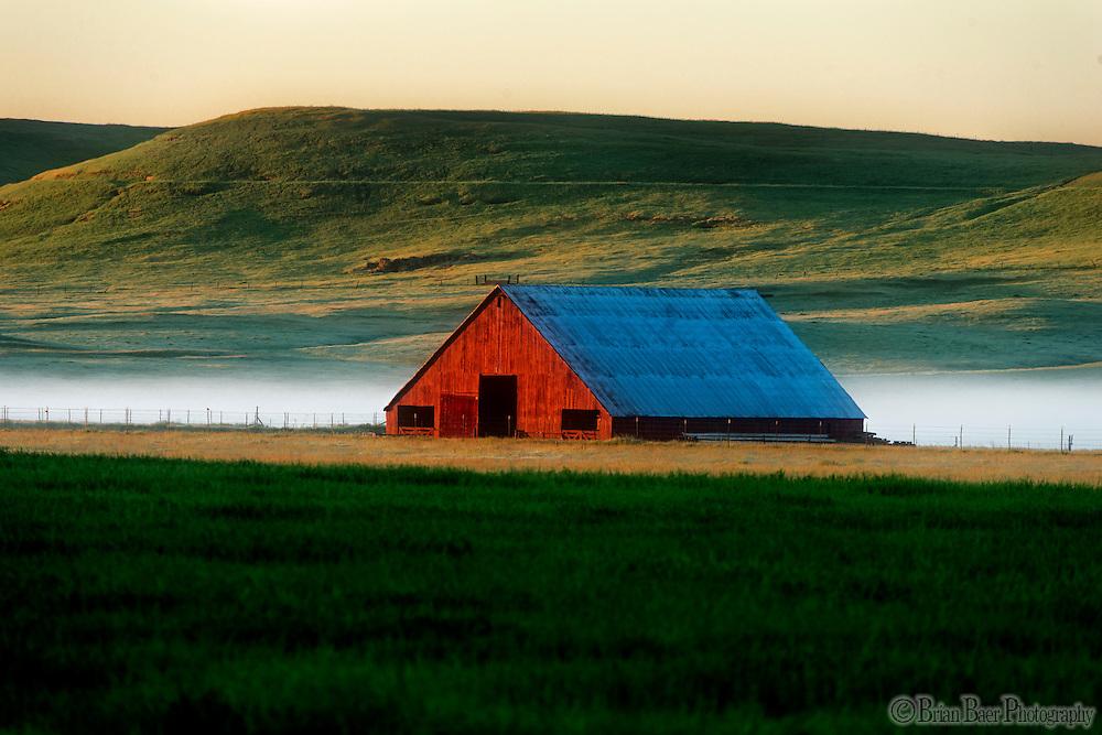 Van Vleck Ranch, Tuesday, April 5, 2016.<br /> Photo Brian Baer