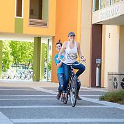 Sigma Alpha Sorority, Alumni, UC Davis, University, College, Campus, Sorority, Membership, 2017