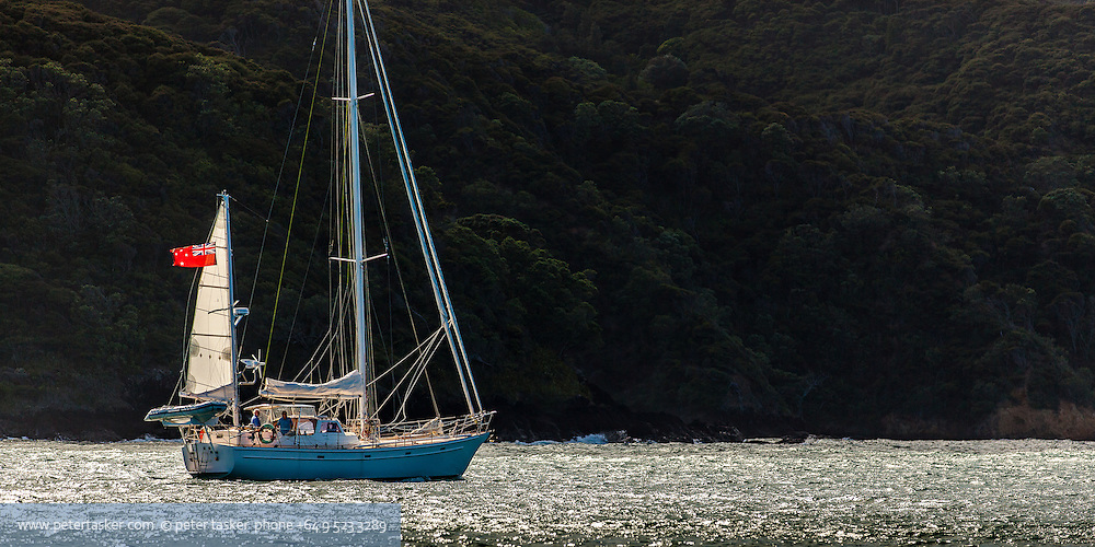 Ketch, Victoria, departing Whangaparapara Harbour, early morning.