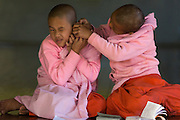 One young Nun checking ear of other Nun, Compassion and Peace Nunnery
