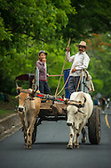 El Salvador, May 2014. A farmer and son in an ox cart on the road. The charming farmers town is of Suchitoto was built in the Spanish Colonial era. Set in the tropics and consisting of cloud forests, volcanic lakes and national parks, El Salvador boasts quiet Spanish colonial towns and a glorious coastline with world-class waves. Photo by Frits Meyst / MeystPhoto.com
