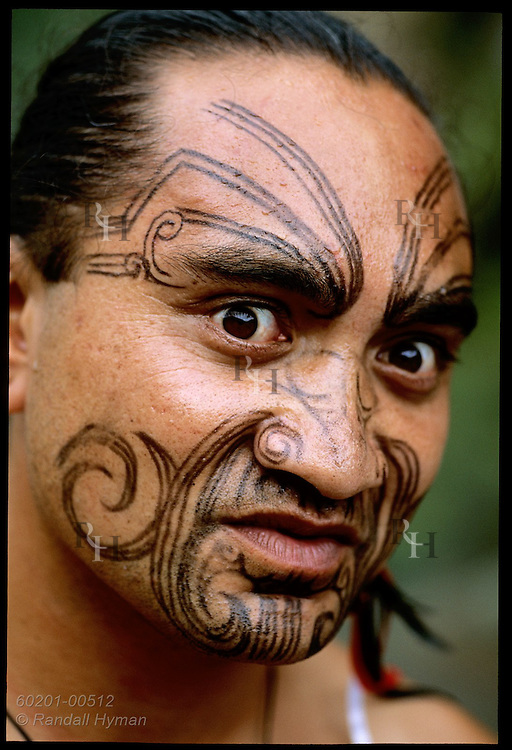 Portrait of traditional Maori performer with tattooed face gazing at camera; Waimangu Volcanic Valley, Rotorua, New Zealand.