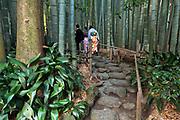people wearing kimono in the bamboo forest garden at Hokokuji Temple Kamakura Japan
