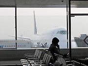 a big airplane seen from airport terminal with waiting person in front