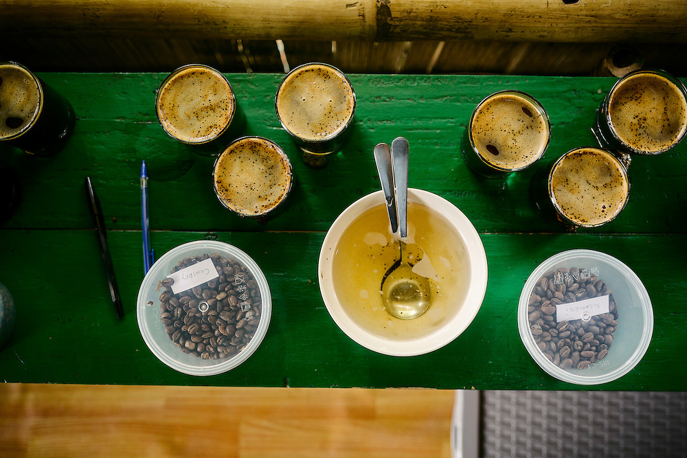 A cupping session, where Antoine Netien tests some of the coffee from the Klassic Bean plantations.