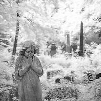 Tower Hamlets Cemetery, London, UK