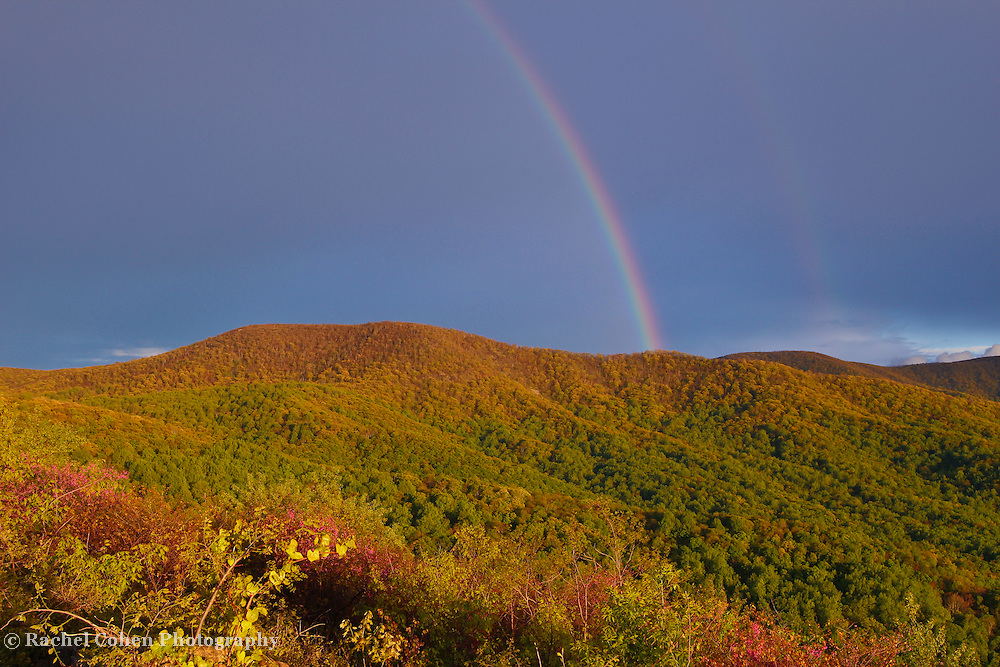 &quot;Rainbow on the Ridge&quot;<br /> <br /> What is more beautiful than a lovely rainbow over the wonderful forests in the Blue Ridge Mountains during spring!!<br /> <br /> The Blue Ridge Mountains by Rachel Cohen