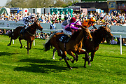 Petrus ridden by Martin Dwyer and trained by Brian Meehan, Salute the Soldier ridden by Adam Kirby and trained by Clive Cox  - Ryan Hiscott/JMP - 19/04/2019 - PR - Bath Racecourse- Bath, England - Race 4 - Good Friday Race Meeting at Bath Racecourse