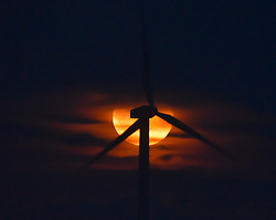 September 6, 2017 - Cumbria, United Kingdom - Image ©Licensed to i-Images Picture Agency. 06/09/2017. United Kingdom. The Harvest Moon rises over the Pennines of Cumbria. Wind turbines silhouetted by the full moon. Picture by Stuart Walker / i-Images (Credit Image: © Stuart Walker/i-Images via ZUMA Press)