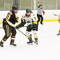 2nd year forward Sarah Hornoi (19) of the Regina Cougars in action during the Women's Hockey home game on January 27 at Co-operators arena. Credit: Arthur Ward/Arthur Images
