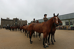 © Licensed to London News Pictures. 14/09/2013. Fifty horses from the King's Troop The Royal Artillery have paraded down to the Firepower, the Royal Artillery museum, at the Royal Arsenal in Woolwich.  They are seen here outside the Old Royal Military Academy.  Credit : Rob Powell/LNP