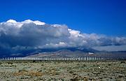 Wind turbines at Palm Springs, California, USA