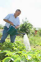 Senior man watering plants in garden