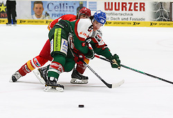 28.11.2014, Curt Frenzel Stadion, Augsburg, GER, DEL, Augsburger Panther vs Duesseldorfer EG, 21. Runde, im Bild Kampf um den Puck zwischen Kurt Davis (Duesseldorfer EG) und Thomas Jordan Trevelyan (Augsburger Panther #24, vorne) // during Germans DEL Icehockey League 21th round match between Augsburger Panther and Duesseldorfer EG at the Curt Frenzel Stadion in Augsburg, Germany on 2014/11/28. EXPA Pictures &copy; 2014, PhotoCredit: EXPA/ Eibner-Pressefoto/ Krieger<br /> <br /> *****ATTENTION - OUT of GER*****