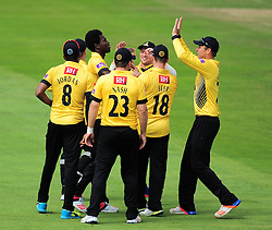 Sussex celebrate a wicket.  - Mandatory by-line: Alex Davidson/JMP - 30/07/2016 - CRICKET - Cooper Associates County Ground - Taunton, United Kingdom - Somerset v Sussex - Royal London One Day
