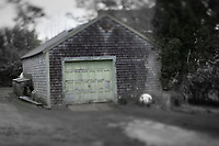Green garage door on an old shed