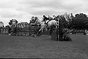 RDS Horse Show.  Barrymore, ridden by Diana Connolly-Carew in the Boylan Trophy Competition..08.08.1963