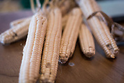 """Corn on display during the discussion """"Indigenous Food in Wisconsin: A Look Ahead"""" during the Cap Times Idea Fest 2018 at the Pyle Center in Madison, Wisconsin, Saturday, Sept. 29, 2018."""