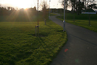 Evening sunlight in local park Sallynoggin Dublin Ireland