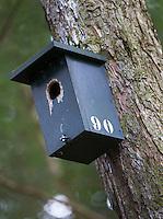 OOSTERHOUT - Nestkast, vogelhuisje; Oosterhoutse Golf Club COPYRIGHT KOEN SUYK