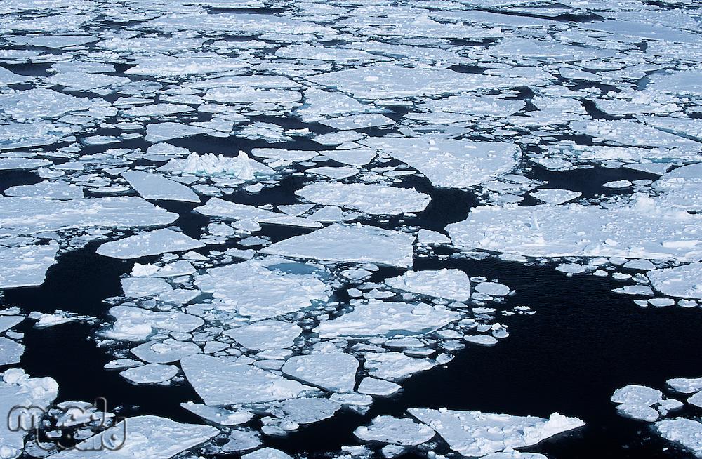 Antarctica Weddell Sea ice floe