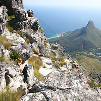 Africa, South Africa, Cape Town. View from Table Mountain, Cape Town.