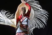 Flamenco<br /> Vera Biglione