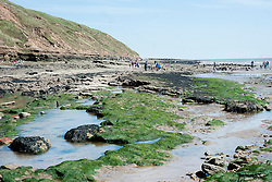 Holiday makers make thier way around the rocks and rockpools during the May Bank Holiday. Filey, North Yorkshire<br />  <br /> 21 May 2013<br /> Image © Paul David Drabble<br /> www.pauldaviddrabble.co.uk