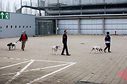 Participants walking their dogs inbetween the ring competitions at the Leipzig Trade Fair outside facilities. Over 31,000 dogs from 73 nations will come together from 8-12 November 2017 in Leipzig for the biggest dog show in the world.