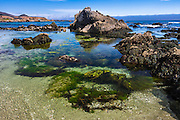 Tide pools at Estero Bluffs State Park, Cayucos, California USA
