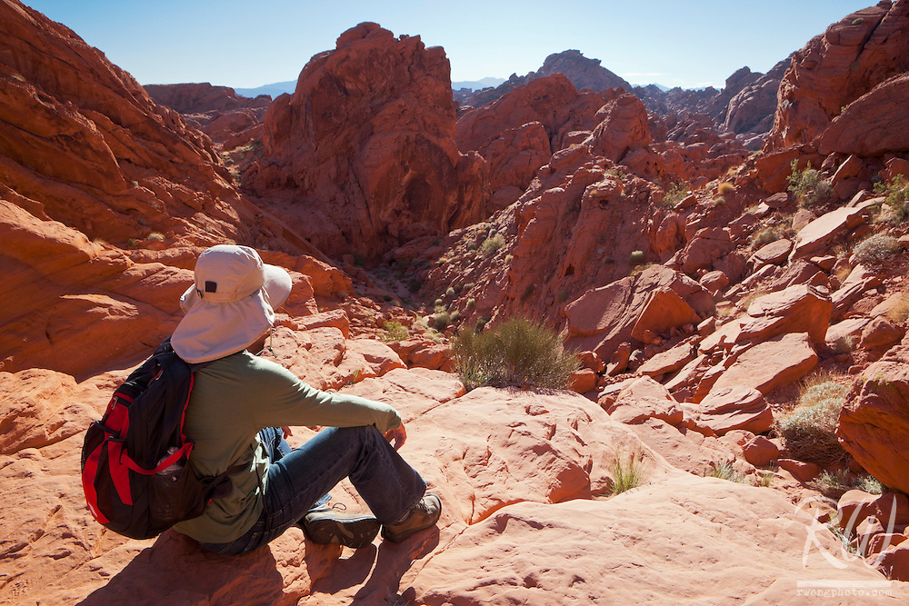 Male Hiker at Fire Canyon Overlook, Valley of Fire State Park, Nevada