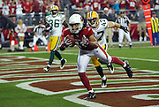 Arizona Cardinals wide receiver Larry Fitzgerald (11) catches a third quarter touchdown pass that gives the Cardinals a 38-24 lead while covered by Green Bay Packers safety Matt Giordano (47) during the NFC Wild Card Game against the Green Bay Packers, January 10, 2010 in Glendale, Arizona. The Cardinals won the game 51-45 in overtime. ©Paul Anthony Spinelli