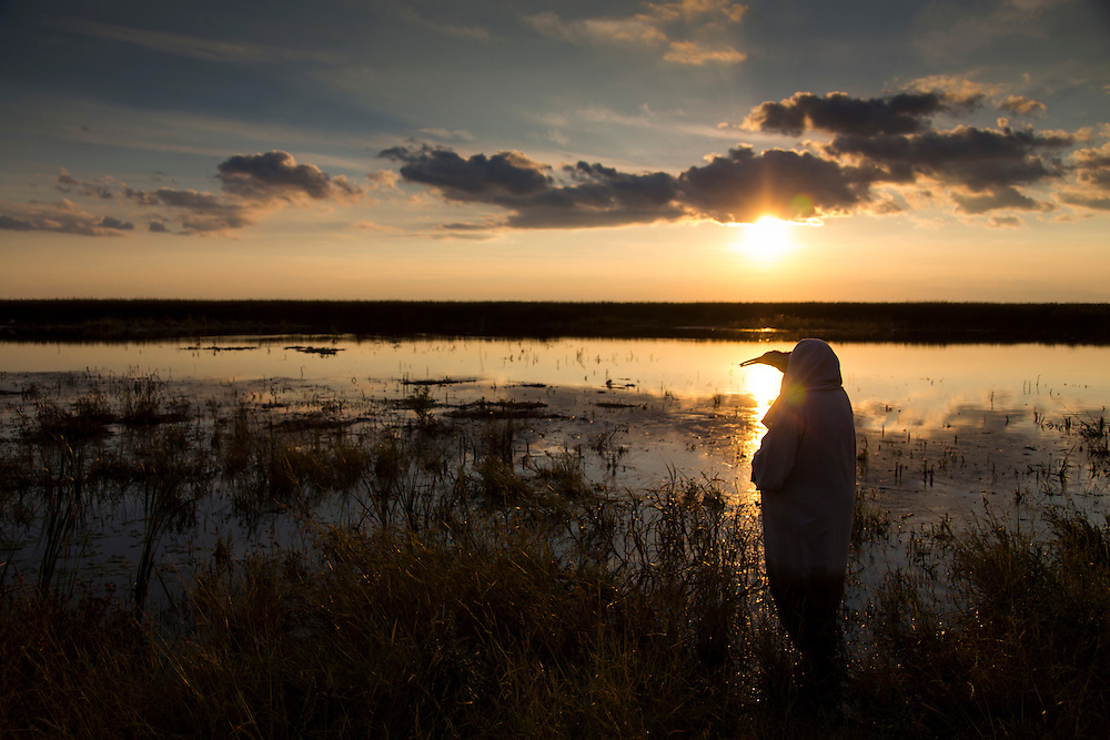 A costumed aviculturist looks out into the marsh for the 9 Whooping Cranes.