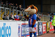 Carlisle United Mascot Olga the Fox greeting young fans during the Sky Bet League 2 match between Carlisle United and Stevenage at Brunton Park, Carlisle, England on 20 February 2016. Photo by Craig McAllister.